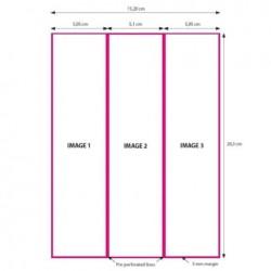 DNP Papier 2 Rol à 200 St. 15x20 Geperforeerd op 5x20 en 10x20 cm voor DS620