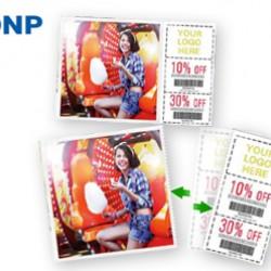 DNP Papier DM4640P 2 Rol à 400 St. 10x15 Geperforeerd voor DS40
