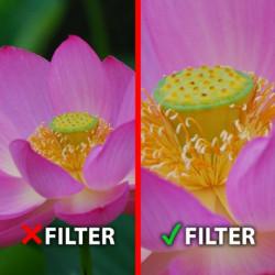 Marumi Macro +3 Filter DHG 77 mm